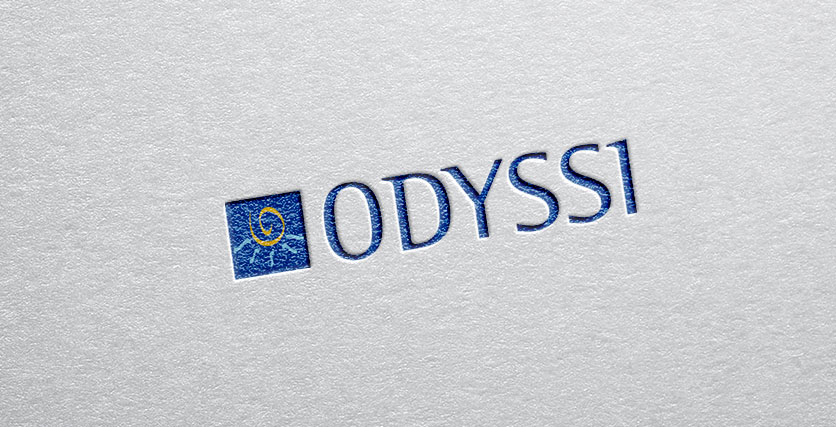 odyssi structuration fonction achats