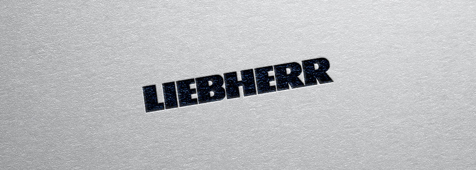 Accompagnement Liebherr-Components SAS
